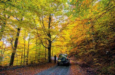 Τζιπάδα στα πολύχρωμα δάση της Βάλια Κάλντα. Η περιοχή είναι από τις πιο παρθένες της Ελλάδας