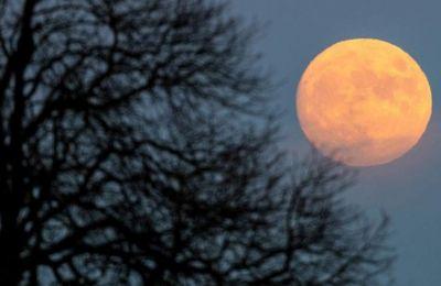 Η Σελήνη ακολουθεί μια ελλειπτική τροχιά και η απόστασή της από τον πλανήτη μας δεν είναι σταθερή.