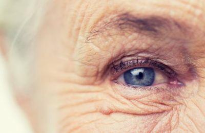 Η μεγάλη ποσότητα πρωτεϊνών αρχίζουν να καταστρέφουν τα ίδια τα κύτταρα του αμφιβληστροειδούς φακού του ματιού.