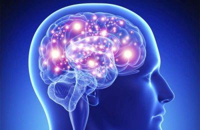 Ο ανθρώπινος εγκέφαλος συνεχίζει να εμφανίζει ενδείξεις σημαντικών αλλαγών για αρκετά χρόνια μετά τα 18.