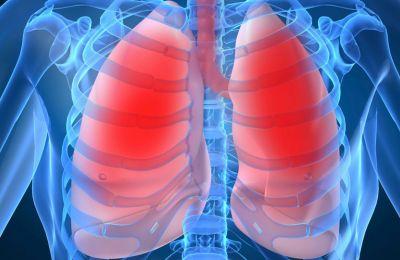 Η λειτουργία των πνευμόνων έχει μεγαλύτερη επίπτωση στους κοντούς από ό,τι άλλοι παραδοσιακοί παράγοντες καρδιαγγειακού κινδύνου