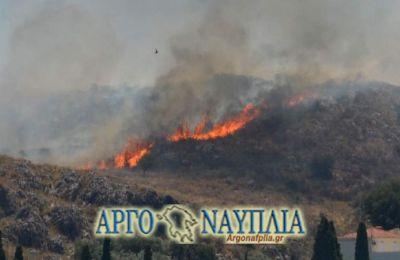 Στο σημείο επιχειρούν 26 πυροσβέστες με 12 οχήματα, μία ομάδα πεζοπόρο τμήμα, δύο αεροσκάφη και ένα ελικόπτερο