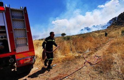 Στην πυρκαγιά επιχειρούν συνολικά 205 πυροσβέστες