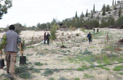 Την 17η Σεπτεμβρίου οι εθελοντές συναντούν το Τμήμα Δασών για καθορισμό των επόμενων βημάτων