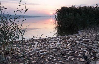 Προ πενταετίας το βάθος της λίμνης έφτανε τα τρία μέτρα