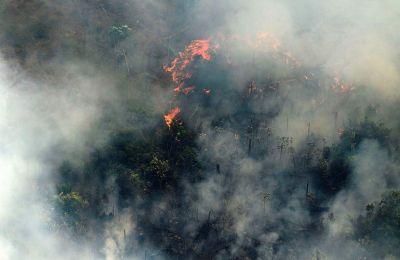Στην πολιτεία Ροντόνια ο αριθμός των πυρκαγιών αυξήθηκε σε διάστημα 24 ωρών κατά 1.915%