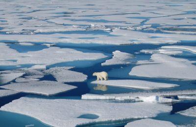 Το λιώσιμο των πάγων στην Αρκτική και Γροιλανδία τριπλασιάστηκε το διάστημα 2007-2016, ενώ στην Κεντρική Ευρώπη χάθηκε 80% παγετώνων