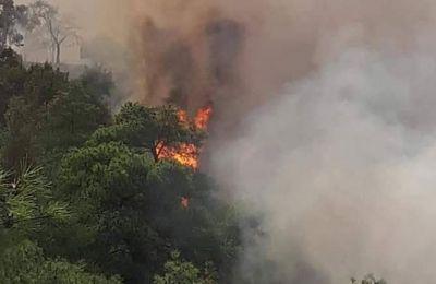 Την Τετάρτη στην Επαρχία Πάφου ξέσπασαν συνολικά επτά πυρκαγιές.