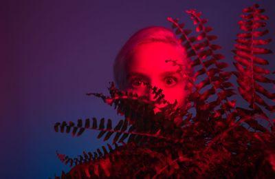Η τραγουδοποιόςNalyssa Green έχει κυκλοφορήσει τρία άλμπουμ: «Barock» (2010), «The Seed» (2012) και το πιο πρόσφατο «Μπλουμ» (2018).