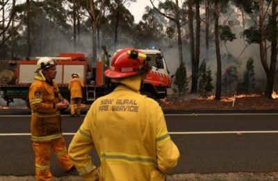 80 εκατομμύρια στρέμματα γης και μισό δισ. ζώα έχουν αφανιστεί εξαιτίας των πυρκαγιών.