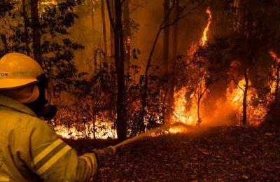 Οι πυρκαγιές που έχουν ξεσπάσει φέτος στην Αυστραλία, οι οποίες συνδέονται με την ξηρασία που πλήττει τη χώρα τα τελευταία χρόνια
