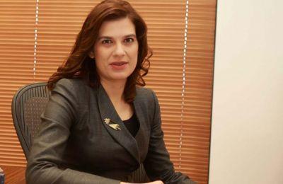 Η κ. Πηλείδου ανέφερε μετά την συνεδρίαση ότι εδώ και εβδομάδες υποβλήθηκε στην Ευρωπαϊκή Επιτροπή το λεπτομερές αίτημα της Κύπρου κ