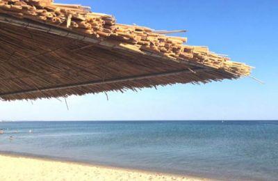 Σήμερα οι αμμώδεις παραλίες καταλαμβάνουν πάνω από το ένα τρίτο της παγκόσμιας ακτογραμμής.