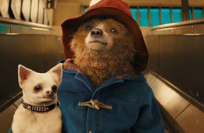 6 ταινίες στο Netflix που είτε σάρωσαν στο box office, είτε αγαπήθηκαν από τον κόσμο και που αξίζει να δεις