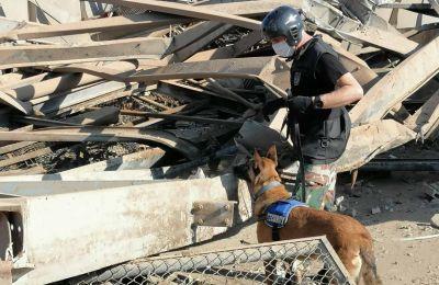 Ψάχνει τυχόν επιζώντες στα συντρίμμια της Βηρυτού η ομάδα από την Κύπρο. Φωτογραφίες, βίντεο: Αστυνομία Κύπρου, Πυροσβεστική Υπηρεσία Κύπρου