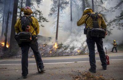 Τα τελευταία χρόνια, το φαινόμενο των δασικών πυρκαγιών στη Σιβηρία τείνει να γίνει συνηθισμένο.
