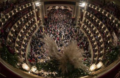 Έπειτα από σχεδόν εξάμηνη αναγκαστική διακοπή της - την μακρύτερη στην ιστορία του θεσμού - φιλοξενεί παραστάσεις όπερας, οπερέτας, μιούζικαλ και μπαλέτου, για πάνω από 1.300 επισκέπτες της κάθε βράδυ
