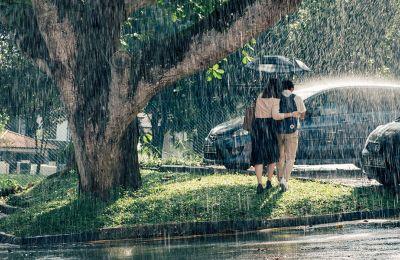 Αισθητικά το φιλμ εκπέμπει μια σχεδόν υπνωτιστική μελαγχολία, την οποία ενισχύει και η βροχή που πέφτει αδιάκοπα σε όλη τη διάρκεια