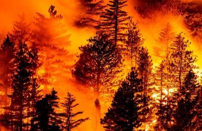 Στη διάσημη για τους αμπελώνες της κοιλάδα της Νάπα καταστράφηκαν πάνω από 10 οινοποιία.