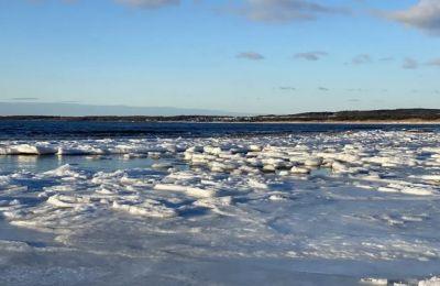 Παγωμένη θάλασσα