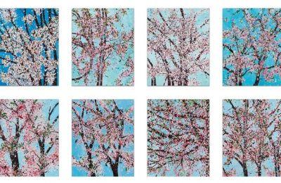 Προς πώληση εκτυπώσεις του Ντ. Χιρστ που απεικονίζουν κλαδιά κερασιάς