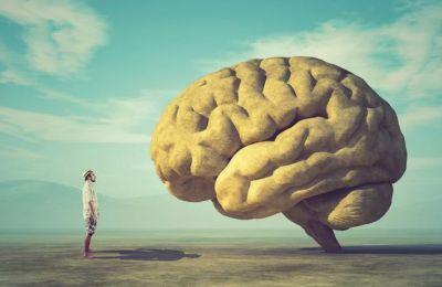 Πόσο περίεργο όργανο είναι ο εγκέφαλος και τι εξωφρενικές καταστάσεις μπορεί να υποκινήσει. (Φωτ. SHUTTERSTOCK)
