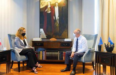 Στήριξη ΔΗΣΥ στην περαιτέρω εμβάθυνση σχέσεων Κύπρου - Γαλλίας