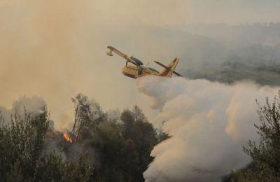Φωτιά στη Ρόδο: Ολονύχτια μάχη με τις φλόγες – Ενισχύονται οι πυροσβεστικές δυνάμεις